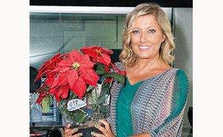 Stella Di Natale Ail 2021.Stelle Di Natale Ail Dal 7 Al 9 Dicembre In 4000 Piazze Italiane