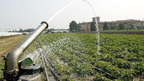 Allarme siccità, Coldiretti
