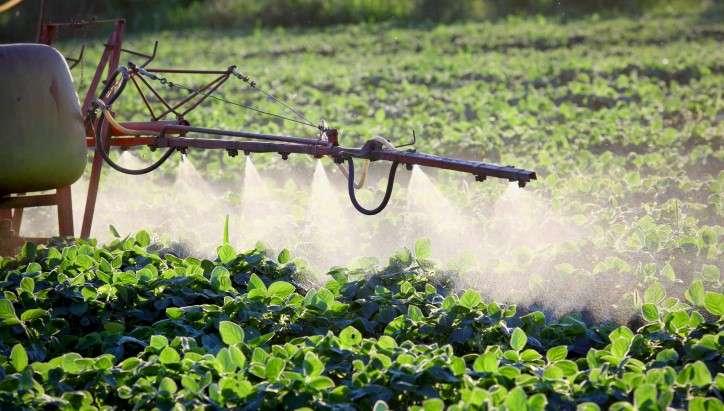 L'agricoltura rialza la testa e chiude il 2020 con il valore della produzione a 4,5 miliardi di euro (+8%) e l'occupazione che cresce del 13%