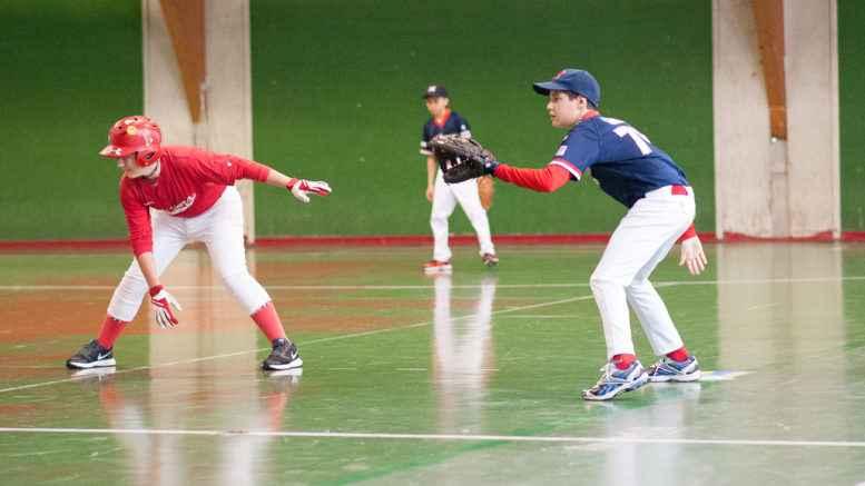Baseball Under 12, Piacenza Baseball