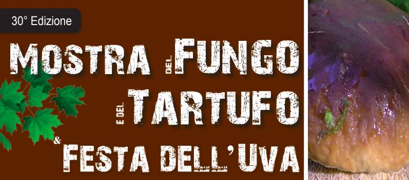 Mostra del Fungo e del Tartufo e Festa dell'Uva