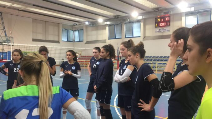 miovolley