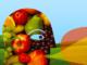 """Volontariato in Onda, ospite L'Associazione Piace Cibo Sano: """"Promuovere un approccio sostenibile e partecipato di filiera per offrire cibo di qualità"""" - AUDIO"""